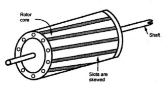 Squirrel Cage Rotor ~ your electrical home