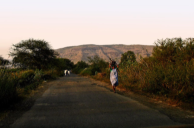 woman carrying sticks on country road