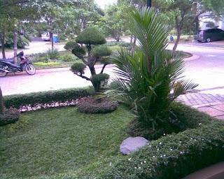 landscape taman rumah