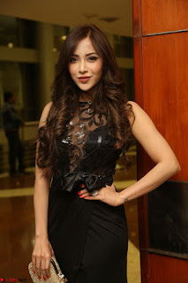 Angela Krislinzki in Transparent Black Gown at Rogue Movie Teaser Launch 1st March 2017 096.JPG