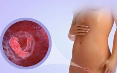 bulan pertama kehamilan