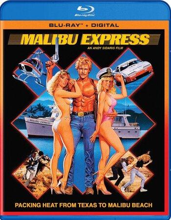 Malibu Express (1985) Dual Audio Hindi 480p BluRay 300MB ESubs Movie Download