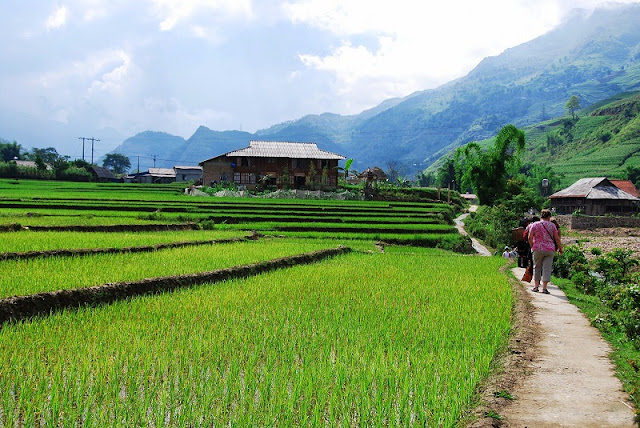 Ta Van Village -- Interesting destination in Sapa tours 2