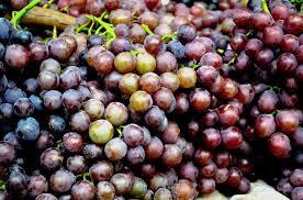 """""""manfaat anggur bagi kesehatan"""""""