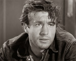 Image result for clu gulager young