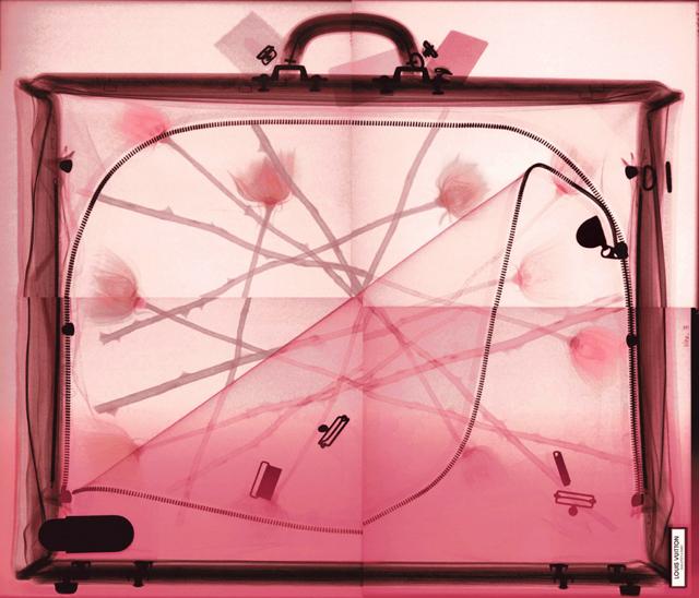 transparent accessories, transparent bags, Steve Miller art, fashion prints