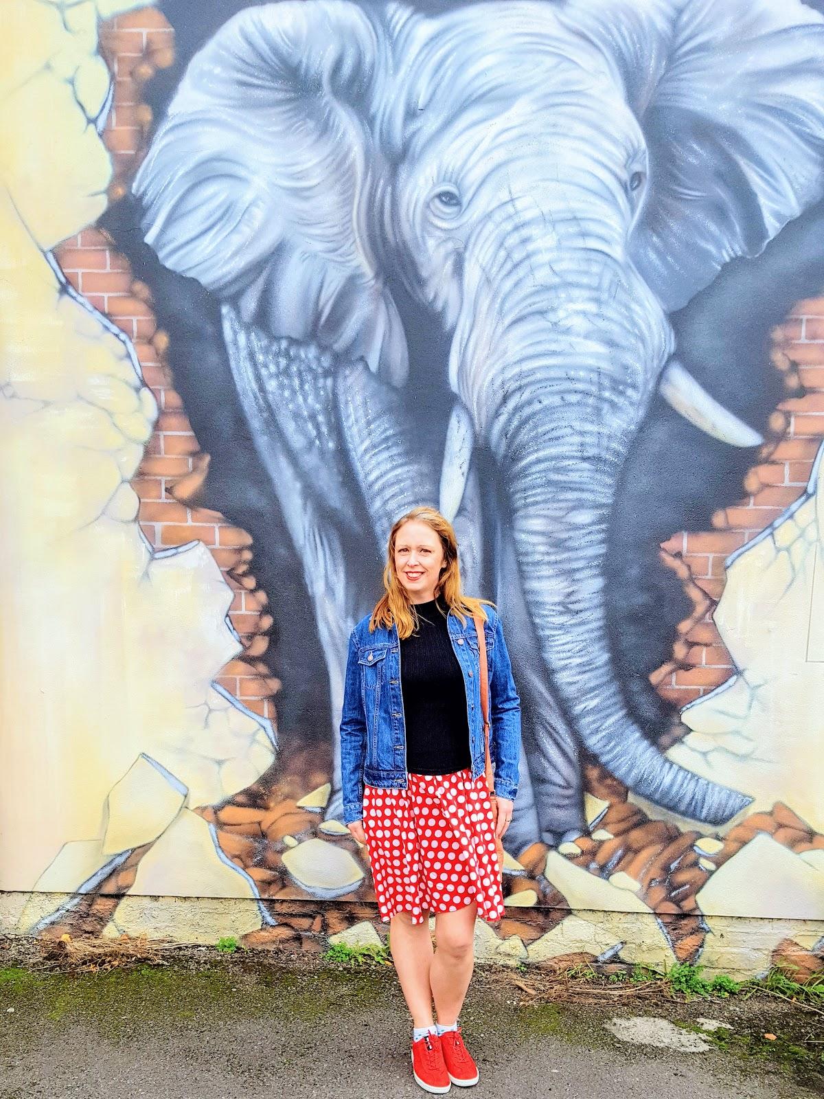 Giant Elephant Graffiti: Street Art In Loughborough