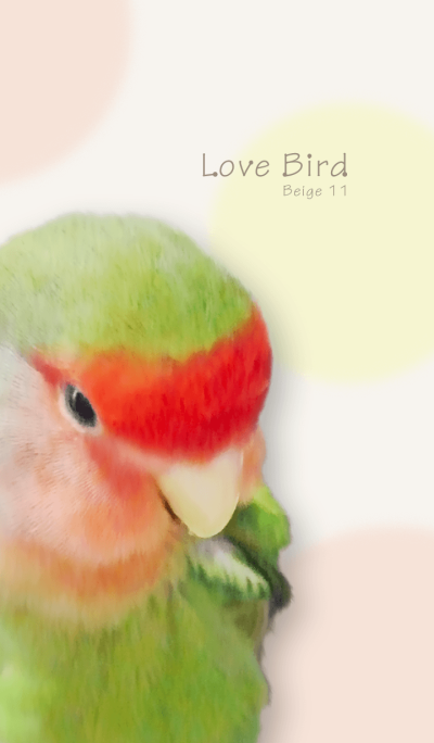 Love Bird/Beige11