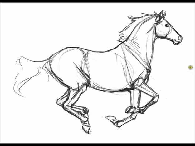 Realistic Horse Coloring Pages Print Special Realistic Horse Coloring Pages