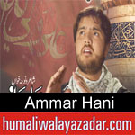 https://www.humaliwalyazadar.com/2018/09/ammar-hani-nohay-2019.html