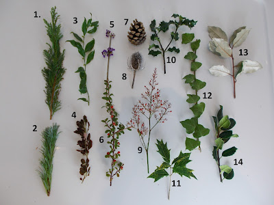 Plant cuttings for Christmas table decoration Green Fingered Blog