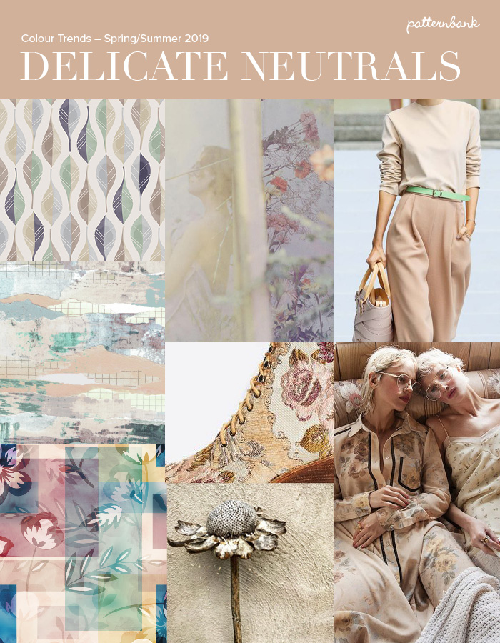 Soft Neutrals Pastel Shades Pale On Natural Colour Muted Texture Faded Softness Delicate