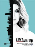Anatomía de Grey Temporada 13×13