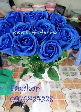 Hoa hong sap thom vinh cuu o Dan Phuong