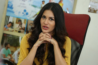 Amyra Dastur In Yellow Dress At Manasuku Nachindi Movie Interview (4)