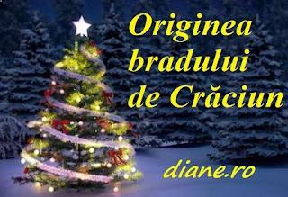 Bradul de Crăciun - Origine