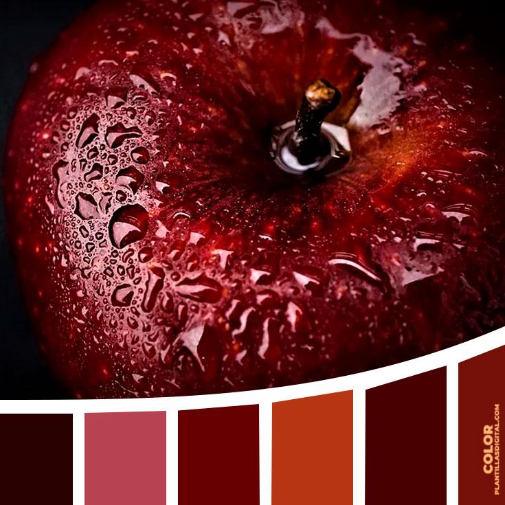 color_415