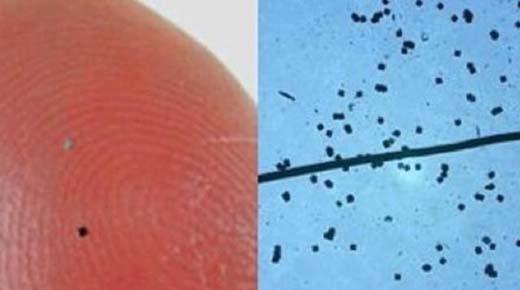 ¡Tenga cuidado con el polvo inteligente espolvoreado! 'Ya podrías estar microchipeado'