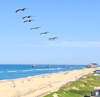 OBX New Real Estate Listings