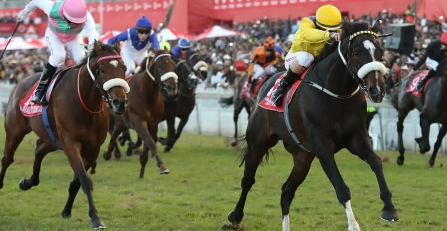 Do It Again winning the 2018 Vodacom Durban July - Horse Racing - Made to Conquer in 2nd place - (Photo Credit: Gold Circle)