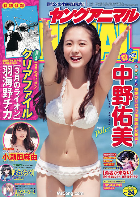 Hot girls Japan porn magazine cover 2014 collection