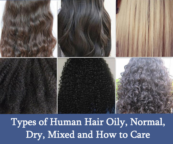 Types of Human Hair Oily, Normal, Dry, Mixed and How to Care