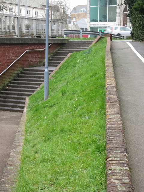 Overall view of the road, the entrance to the underpass and grass where the thistle grows and daisies flower.