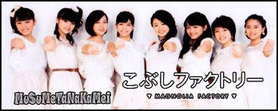 http://musumetanakamei.blogspot.mx/p/kobushi-factory.html