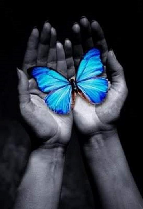 Mãos com borboleta.