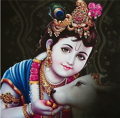krishna with cow wallpaper