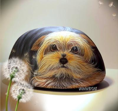 Sassi dipinti yorkshire cane