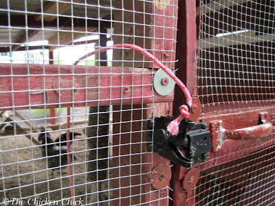 Latch with rope attached permits opening the chicken run door from the inside.