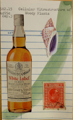 Dewars bottle vintage ad postage stamp seashell Cellular Ultrastructure of Woody Plants library card Dada Fluxus mail art collage