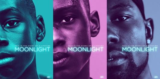 Sinopsis / Alur Cerita Moonlight (2016)
