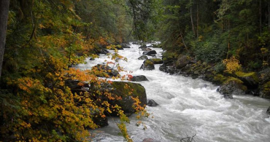 Stewardship of the Nooksack River Watershed with Bert Webber, April 30, 2017
