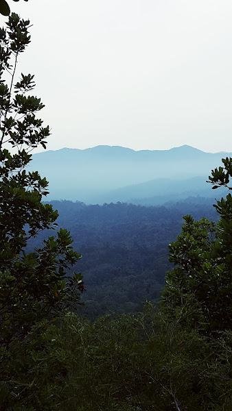 Balam-balam gunung