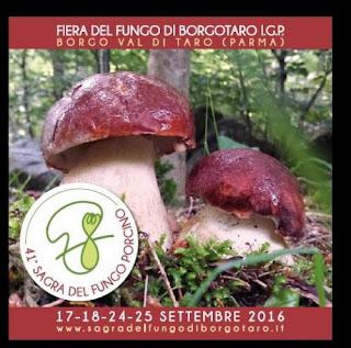 Fiera del fungo di Borgotaro IGP 17-18-24-25 settembre Borgo Val di Taro (PR)