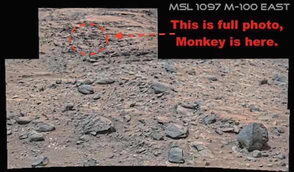 Penampakan Kera Di Planet Mars?