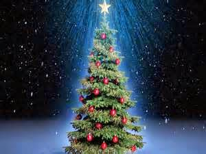 History Of Christmas Tree.Heroes Heroines And History O Tannenbaum History Of The