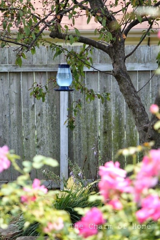 Perky Pet Waterer