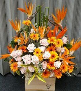 hoa sinh nhật cho các đối tượng