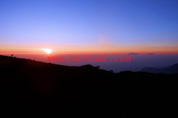 Mendaki Gunung Prau, Si Cantik yang Ramah Pemula