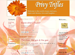nice-indian-personal-blog-privytrifles