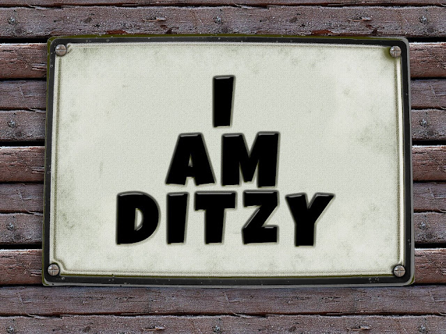 I'm Ditzy. Stupid and smart all at the same time.
