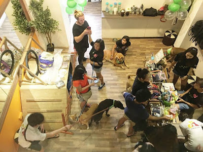 pet friendly cafes in singapore