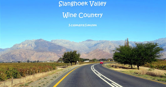 Slanghoek Valley, Wine Country