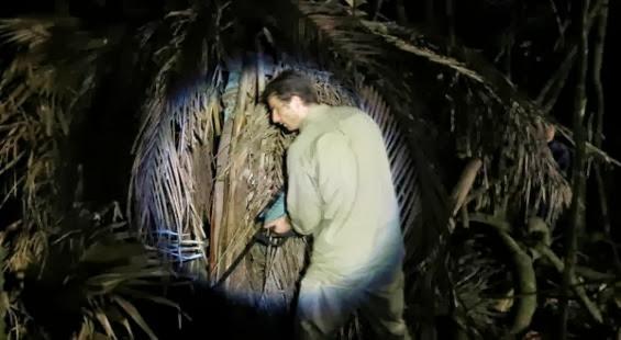 [Crítica] La jungla (The jungle) - Andrew Traucki, 2013