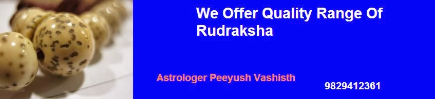 Who Can Wear Rudraksha
