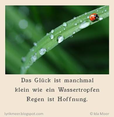 Lyrikmeer-Haiku, Wenn es Glück regnet, Das Glück ist manchmal / klein wie ein Wassertropfen / Regen ist Hoffnung Ida Moor, maikäfer, natur, grafik, bild,