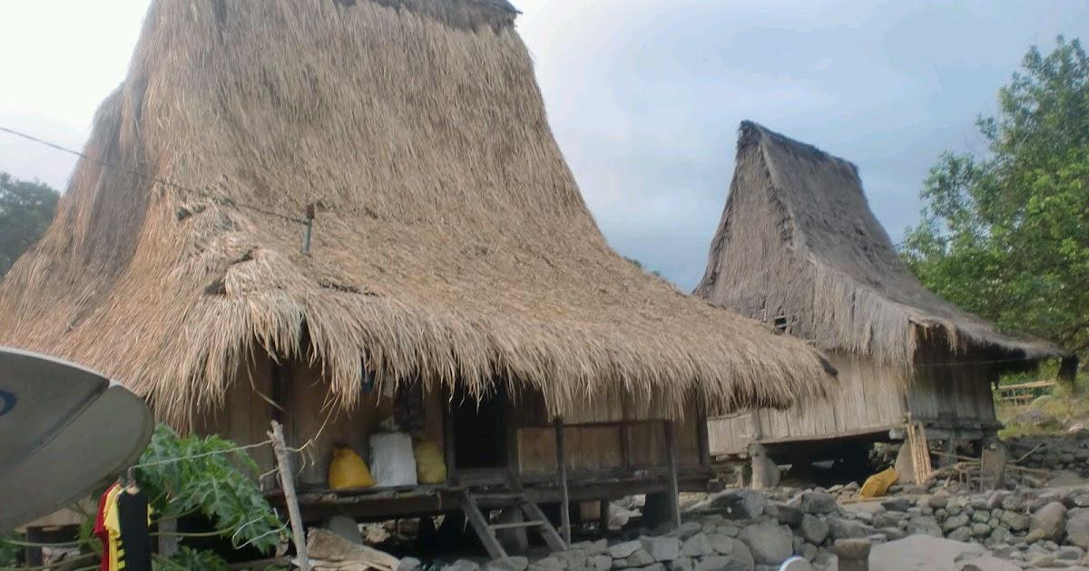 Rumah Adat Unik di Nusa Tenggara Timur  Desain Interior